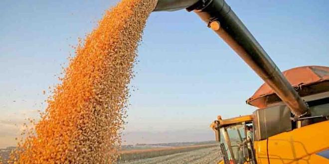 Agricultura brasileira é modelo de desenvolvimento para outros países da faixa tropical do globo