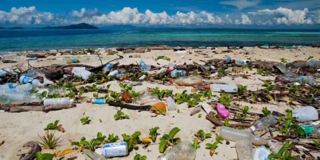 No Dia Mundial dos Oceanos, exploração de petróleo e gás ameaça nossos mares