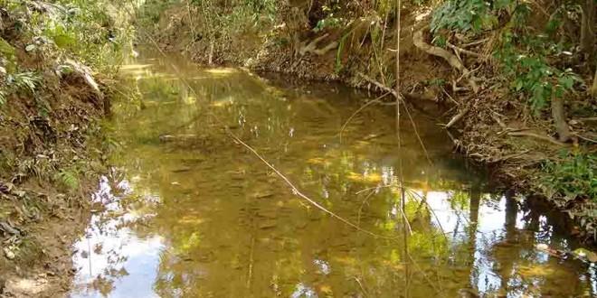Pesquisa propõe parâmetros por região para avaliar qualidade da água no Brasil