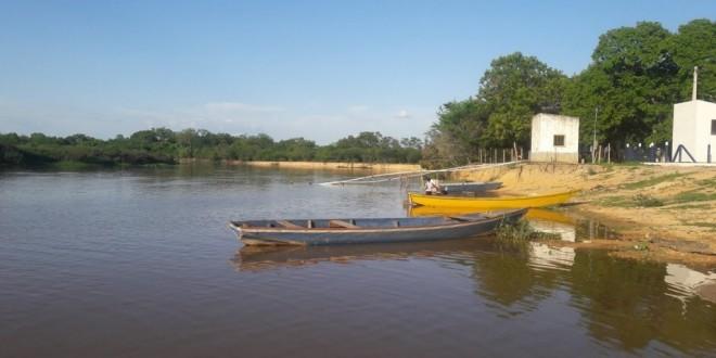 Municípios da Bahia estão entre os que mais desmataram a Mata Atlântica entre 2019 e 2020
