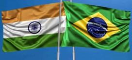 Evento promove aproximação da Embrapa com a Índia para parceria em PD&I