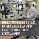 """""""Sentimos a necessidade de elaborar esse manual para que o médico-veterinário possa desempenhar a sua função privativa com zelo e capacitação"""", explica Mara Massad. Foto: ilustrativa/ reprodução."""