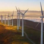 Complexo Eólico Oitis terá capacidade instalada de 566,5 MW. Foto: Neoenergia / Iberdrola